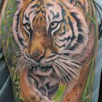 Tiger Sleeve Tattoo-Collective Studios Ink